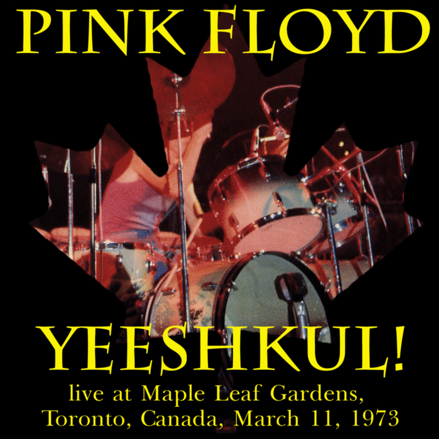 Lossless Search Results for Pink Floyd - Yeeshkul! - 1973-03-11